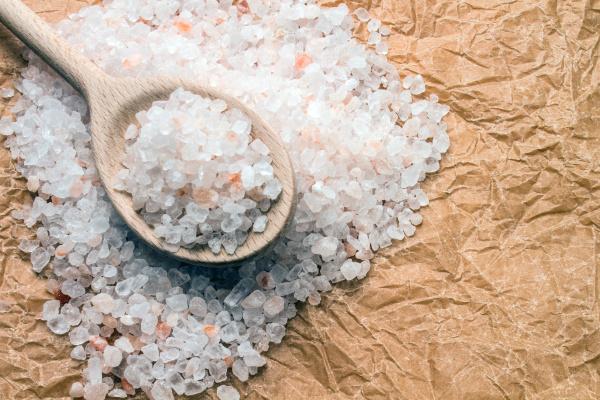 colher de madeira com sal grosso