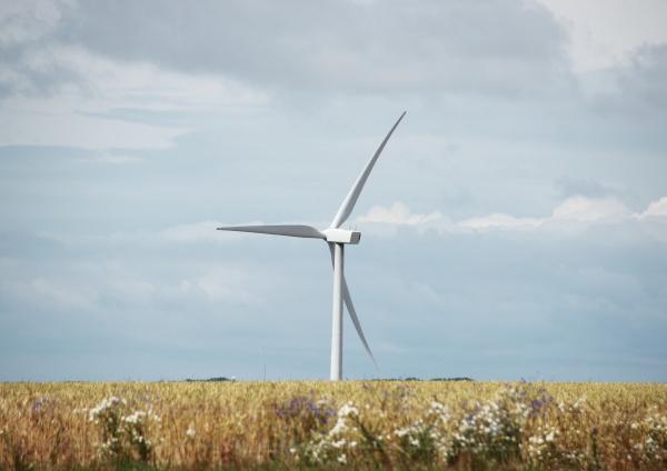 ambiente producao moinho de vento extracao