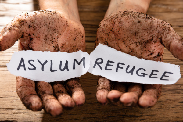 refugiados aves migratorias asilo iraque abrigo