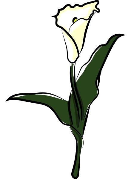 flor branca ilustracao vetor em fundo