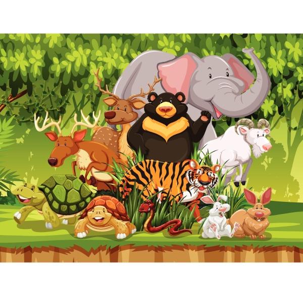 animais, selvagens, na, floresta - 30266240