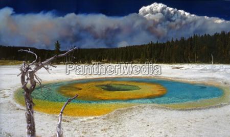 fumaca arvore parque nacional eua colorido