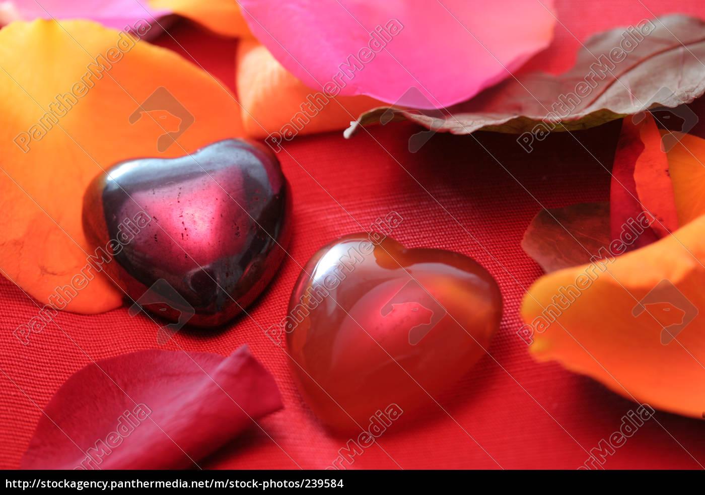 matéria, do, coração - 239584