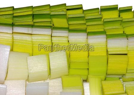 close up detalhe verde caucasiano vegetal