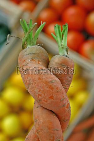 vegetal ingestao cenouras cenoura laranja amor