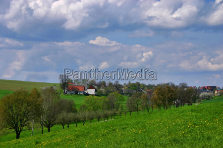 casas rural arvore arvores tranqueilidade primavera