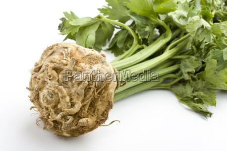 cozinheiros cozinhar vegetal aipo rabano sellery