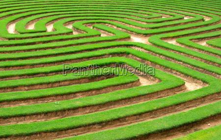 labirinto de grama