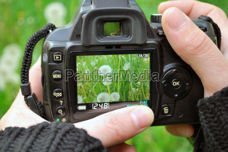 fotografo natureza