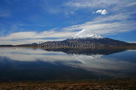 chile vulcao parinacota lago chungara lauca
