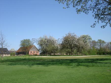 primavera golfe