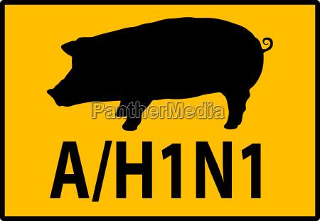 aviso da gripe suina h1n1