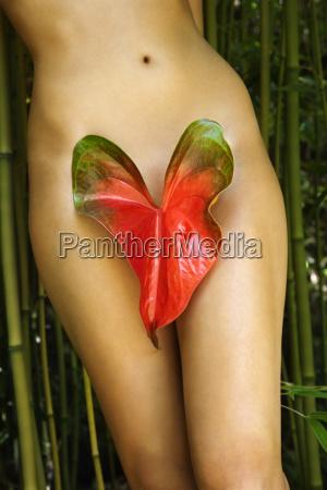 mulher nu na natureza