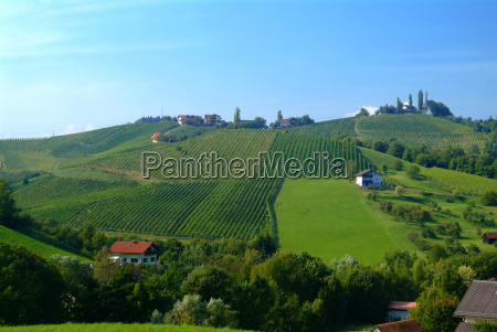 wine hill styria