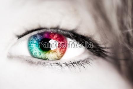 cor olho orgao espectro iris farbspektrum