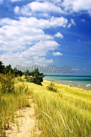 sand dunes at beach