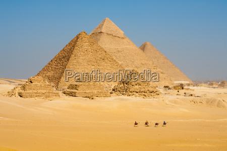 camelos linha caminhada piramides todos