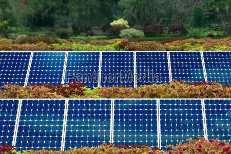 concept of solar panel garden