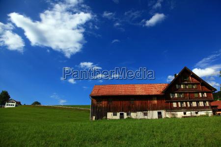 agricultura suica fazenda appenzell alp alpkaese