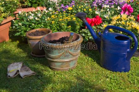 jardim flor planta fabrica decoracao jardinagem