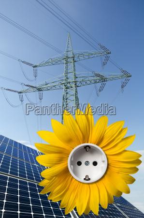 modulos solares girassol com soquete e
