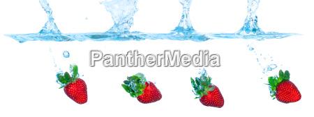 azul movimento em movimento alimento beber