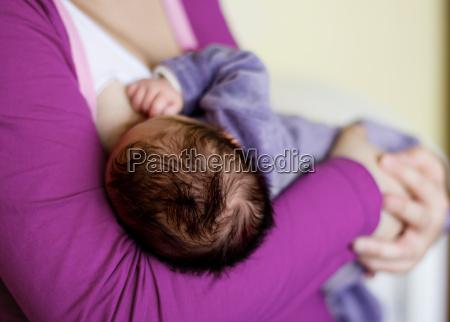 alimentando o bebe recem nascido