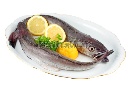 duas pequenas pescadas