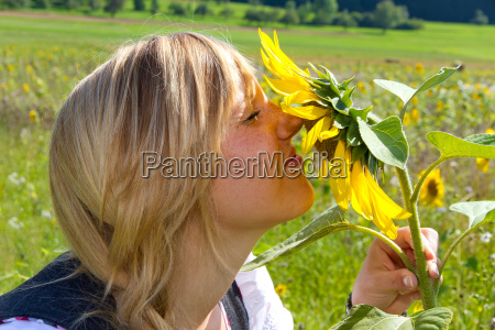 smell at the sunflower