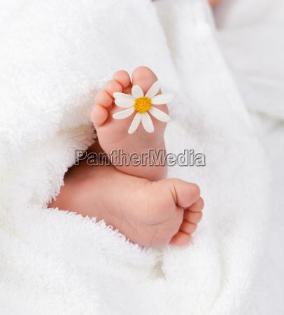 bebe infantil pe toalha margarida marie