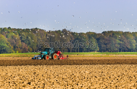 agricultura arar o campo com