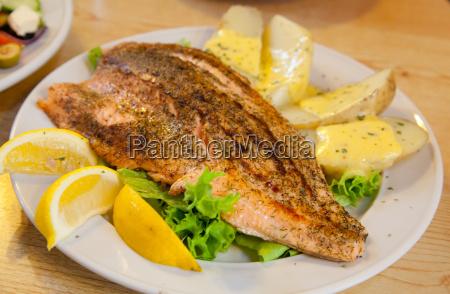 alimento peixe pesca gourmet frutos do