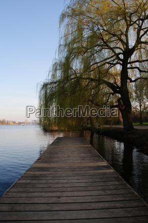 azul arvore madeira ponte primavera hamburgo