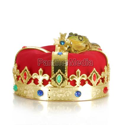 sapo na coroa