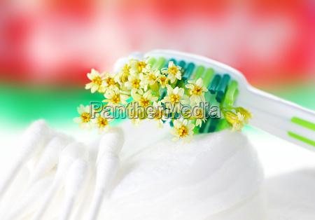 escova de dentes com flores minusculas