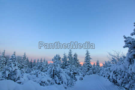 winter winter landscape snow scenery countryside