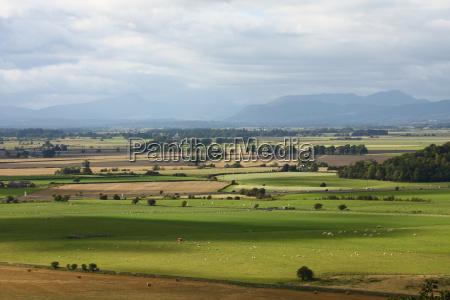 agriculture farming field width sunlight scotland