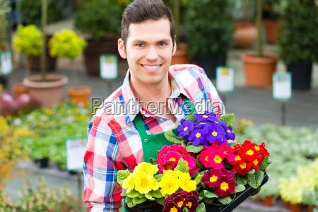 floriculture gardener in his garden