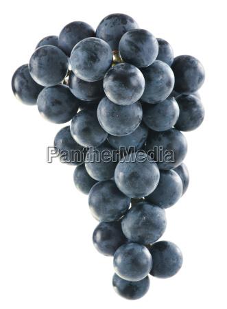 bando, de, uvas, vermelhas, frescas, isoladas - 10107213