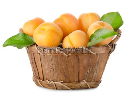 damascos, em, uma, cesta, isolada - 10122745
