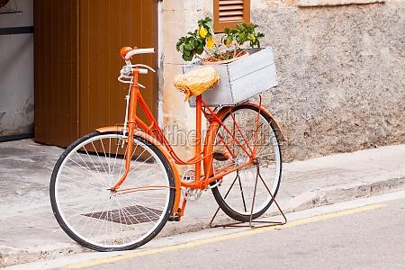 bicicleta senhoras em flores de laranja