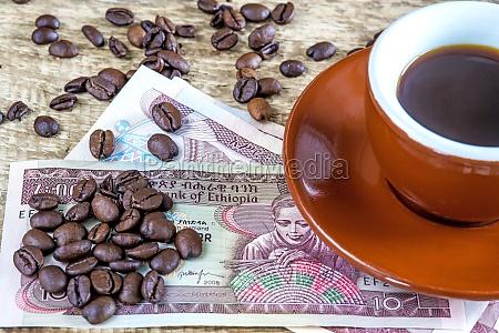 feijoes de cafe de etiopia