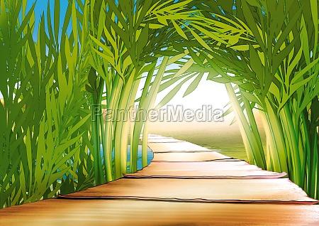 bamboo grove background illustration