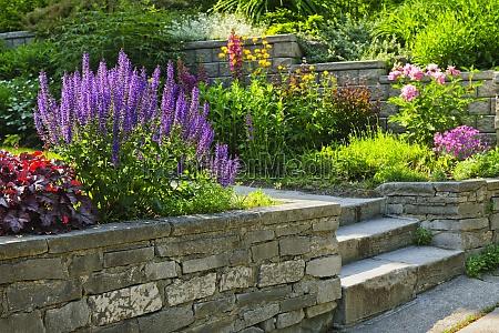 jardim com ajardinar de pedra