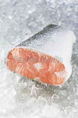 food aliment angle fish raw blurred
