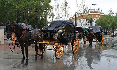 arrival in seville