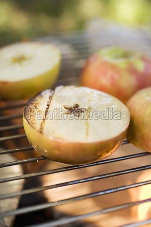 food aliment progenies fruits fruit apples