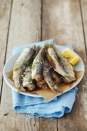 food aliment salt spice condiment fish