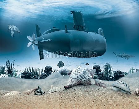 vida subaquatica com submarino