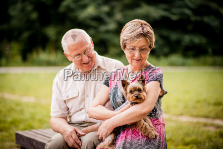 pares senior com cao